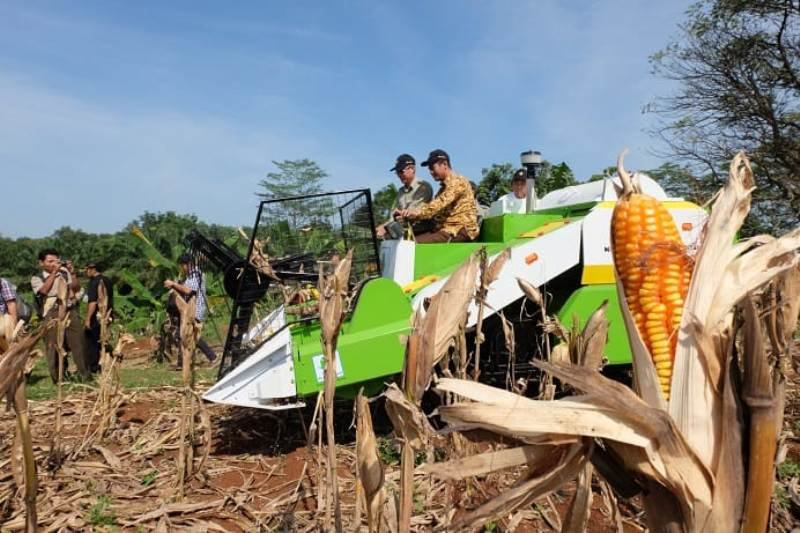 https: img.okeinfo.net content 2019 08 13 1 2091203 presiden-jokowi-kagum-pertanian-indonesia-bertransformasi-jadi-modern-jkDytB2gQr.jpg