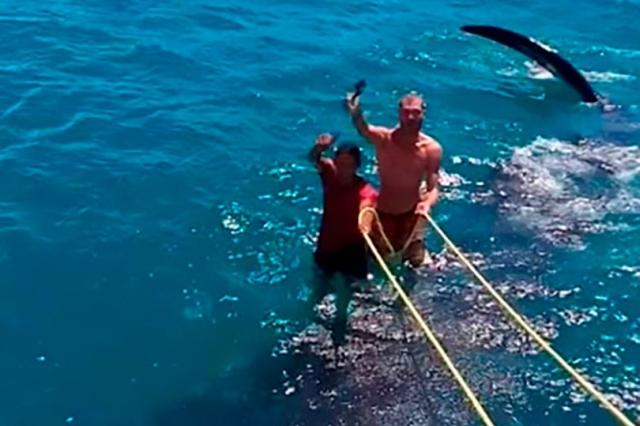 https: img.okeinfo.net content 2019 08 19 18 2094006 dua-pria-menunggangi-hiu-paus-picu-kemarahan-warganet-meksiko-yrimjzbt6X.jpg