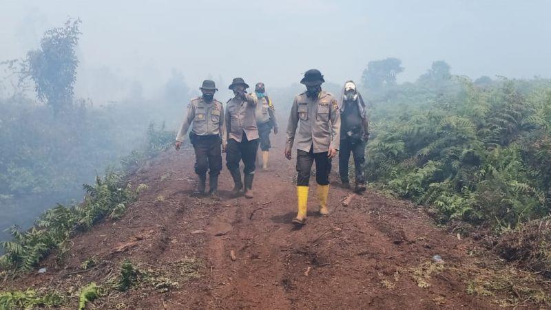 https: img.okeinfo.net content 2019 08 22 340 2095150 kebakaran-perusahaan-sawit-di-inhu-meluas-hingga-50-hektar-mKqrzoJ3dX.jpg