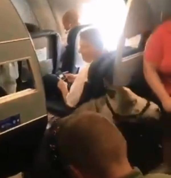 https: img.okeinfo.net content 2019 09 03 18 2100227 seekor-kuda-ikut-terbang-bersama-penumpang-di-pesawat-american-airlines-wqXd0wsEes.jpg
