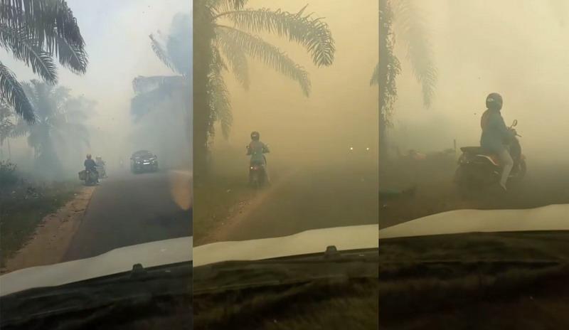 https: img.okeinfo.net content 2019 09 12 337 2103937 viral-pemotor-tabrak-pohon-kelapa-sawit-di-tengah-kabut-asap-skIQtTsVTG.jpg