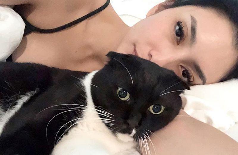 https: img.okeinfo.net content 2019 09 16 194 2105297 gaya-manja-tyas-mirasih-main-bareng-kucing-masih-tetap-seksi-D0jXRXvBsh.jpg
