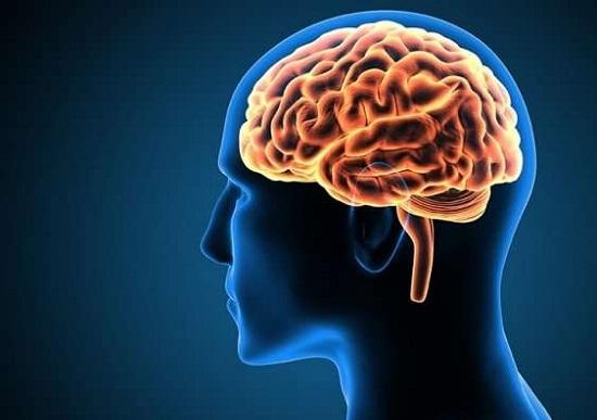 https: img.okeinfo.net content 2019 09 16 56 2105540 ahli-biologi-ungkap-kekuatan-pikiran-bisa-ubah-kehidupan-seseorang-pVy5XNGkWe.jpg