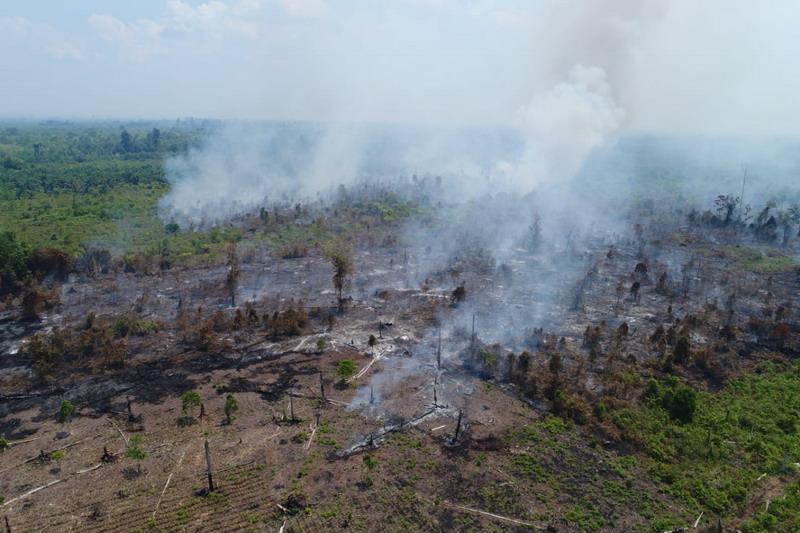 https: img.okeinfo.net content 2019 09 17 337 2105710 wacana-copot-kapolda-dinilai-penting-untuk-penegakkan-hukum-soal-kebakaran-hutan-NqbKR1jwiV.jpg