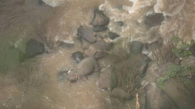 https: img.okeinfo.net content 2019 10 06 18 2113466 6-gajah-mati-saat-mencoba-menyelamatkan-satu-sama-lain-di-air-terjun-neraka-FP5GUQ0wtz.jpg