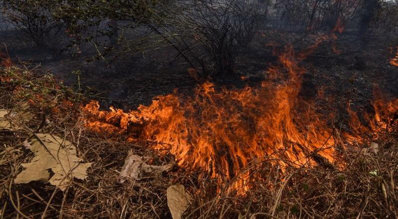 https: img.okeinfo.net content 2019 10 08 337 2114350 polisi-selidiki-penyebab-kebakaran-di-kawah-putih-u0equgi030.jpg