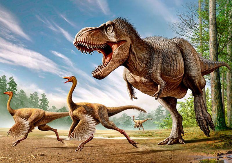 https: img.okeinfo.net content 2019 10 08 65 2114378 asal-usul-dinosaurus-apakah-berbulu-seperti-burung-rdpNV4VpSV.jpg