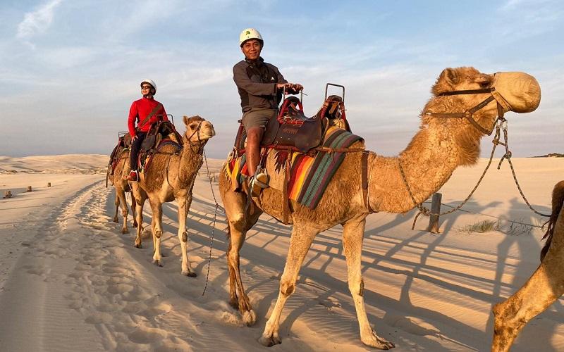 https: img.okeinfo.net content 2019 11 01 406 2124730 menikmati-senja-sambil-menunggang-unta-di-padang-pasir-australia-v008VGRWKd.jpg