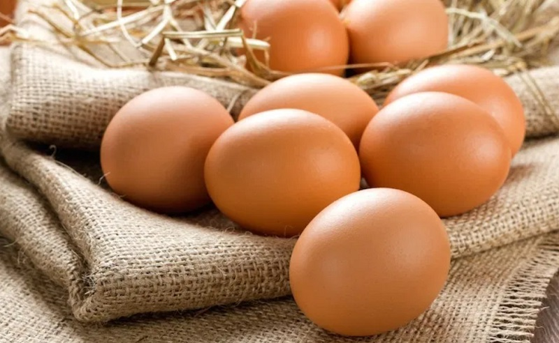 https: img.okeinfo.net content 2019 11 05 481 2126031 makan-42-butir-telur-pria-ini-langsung-tewas-EiPc4erUwR.jpg