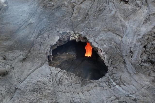 https: img.okeinfo.net content 2019 11 08 18 2127345 pria-di-hawaii-jatuh-ke-lubang-saat-tebang-pohon-hwzMjyyDQj.jpg