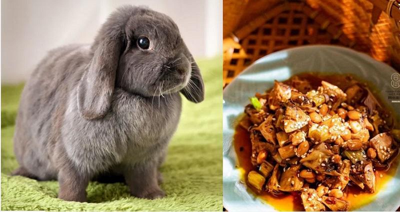 https: img.okeinfo.net content 2019 12 11 298 2140475 jual-makanan-dari-daging-kelinci-restoran-ini-dikecam-5-000-aktivis-pencinta-hewan-NU8DBv78nw.jpg
