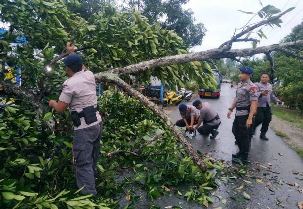 https: img.okeinfo.net content 2020 01 12 340 2151987 hujan-angin-landa-gorontalo-pohon-tumbang-tutup-jalan-trans-sulawesi-v32EXapu4D.JPG