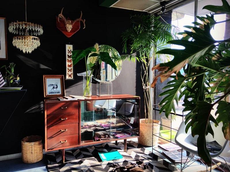 https: img.okeinfo.net content 2020 01 24 196 2157986 ide-dekorasi-taman-indoor-minimalis-modern-bikin-rumah-jadi-nyaman-6sbOLBUgw0.jpg