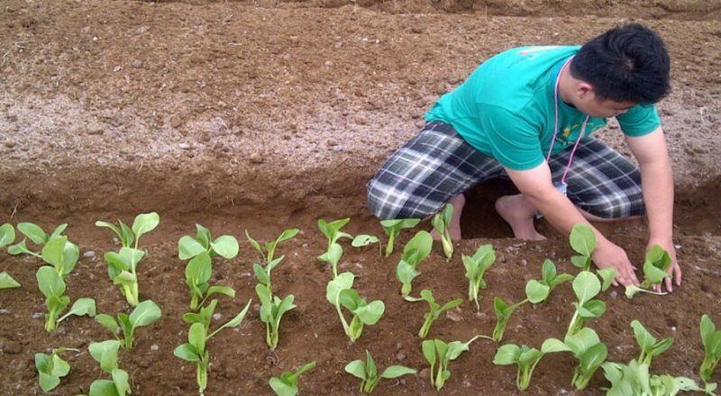 https: img.okeinfo.net content 2020 01 29 320 2160165 4-langkah-menuju-pertanian-modern-termasuk-pemanfaatan-teknologi-vv6XSZyORj.jpg