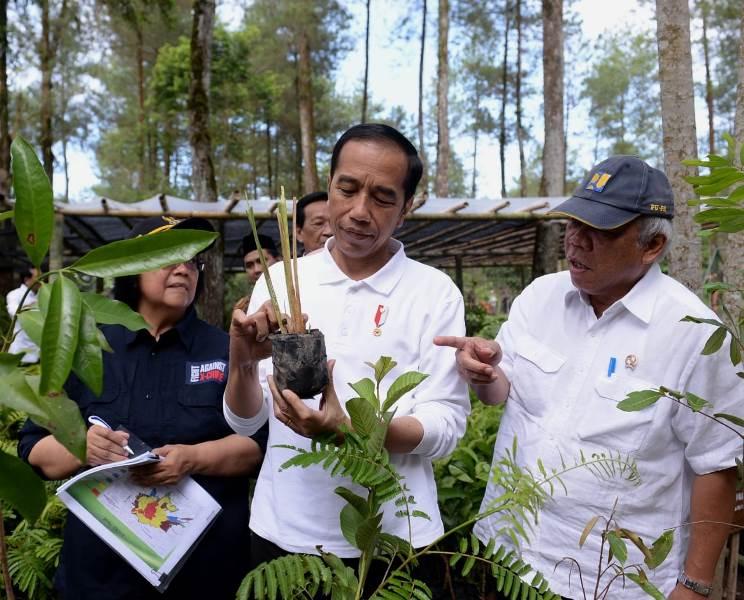 https: img.okeinfo.net content 2020 02 14 337 2168500 presiden-jokowi-ajak-jaga-ekosistem-flora-fauna-Z4OG5ptpBm.jpg