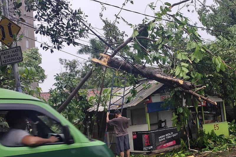 https: img.okeinfo.net content 2020 02 16 338 2169387 dihempas-angin-kencang-pohon-tumbang-timpa-warung-dan-rumah-di-tangsel-uh2HhjVghV.jpg