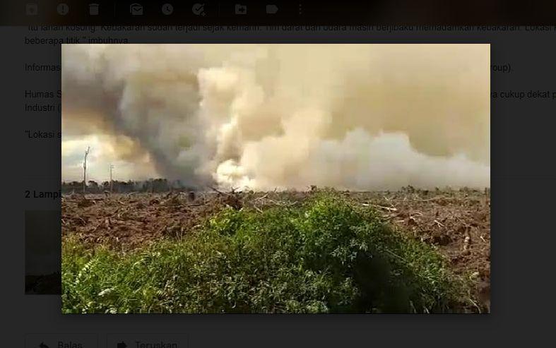 https: img.okeinfo.net content 2020 06 29 340 2238007 lahan-di-pelalawan-riau-terbakar-2-helikopter-dikerahkan-S8as7CdZhm.jpg