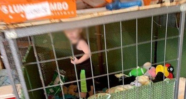 https: img.okeinfo.net content 2020 06 30 18 2238773 gerebek-rumah-polisi-temukan-bocah-kelaparan-dalam-kandang-dikelilingi-ratusan-hewan-nrZy6EKKll.jpg