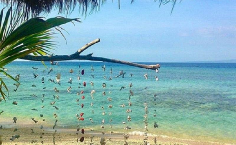 https: img.okeinfo.net content 2020 06 30 406 2238671 gili-air-surga-diving-dan-snorkeling-yang-tawarkan-suasana-tenang-VLKkZk4mse.jpg