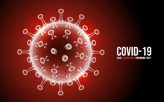 https: img.okeinfo.net content 2020 07 01 337 2239535 odp-virus-corona-capai-45-192-pdp-13-296-plThBCSTlR.jpg