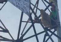 Kembali Berulah, Petugas 'Paksa' Agustinus si Pemanjat Baliho di Depan Menara Mulia Turun