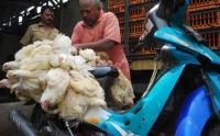 Harga Ayam dan Telur Naik, Mendag: Lonjakannya Tidak Besar