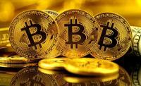 BUSINESS HITS: Anjlok 50%, Bitcoin Mulai Ditinggal?