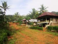 Sepenggal Cerita Desa Tertinggal yang Dijaga Harimau