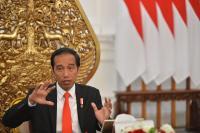Proyek Jalan Layang Dimoratorium, Jokowi: Semua Butuh Pengawasan Manajemen Kontrol yang Tepat!