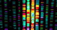 Ilmuwan Usung Terapi Gen untuk Menyembuhkan Penyakit