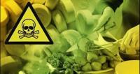 Belasan Warga Kulon Progo Keracunan, Polisi Periksa Sampel Makanan
