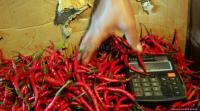 Harga Cabai Merah Kian 'Pedas' Rp60.000 Kg