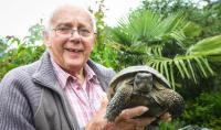 Kura-kura Berusia 100 Tahun Ini Bertamasya Sejauh 1 Mil Setelah Kabur Selama 1 Minggu