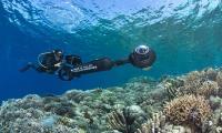 Terumbu Karang Perairan Sulawesi Tahan Pemanasan Global