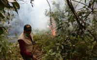 Lupa Padamkan Api saat Bakar Jerami, Lahan 2 Hektar Malah Hangus Terbakar