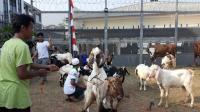 Melihat Lebaran Idul Adha Warga Binaan di Balik Tembok Penjara