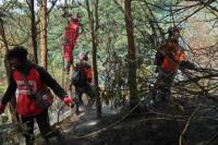 5 Regu Berjibaku Padamkan Kobaran Api di Gunung Sumbing