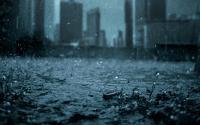 Jakarta Akhirnya Diguyur Hujan, Warganet Ramai-Ramai Berucap Syukur