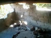 Gempa Mamasa hingga 541 Kali Berdampak 198 Rumah Warga Rusak