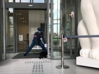 Penjaga Museum Jepang Terlibat