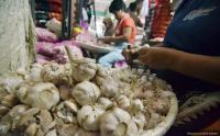 Bawang Putih Seharga Rp150 Juta Dicuri di Australia