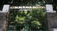 Dilanda Angin Kencang, Kebun Raya Bogor Tutup Sementara