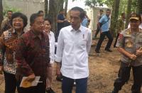 Jokowi Sarankan Petani Sawit Beralih Tanam Jengkol dan Petai