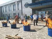 BNN Musnahkan 335 Kg Ganja yang Akan Diedarkan pada Malam Tahun Baru
