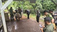 Belasan Rusa Mati dengan Gigitan di Leher, Petugas Gelar Olah TKP