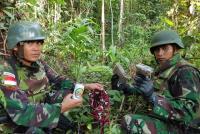 TNI Amankan 100 Gram Ganja Kering di Perbatasan Papua-PNG