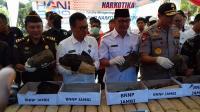 Peringati Hari Antinarkotika, 74 Kg Ganja Dimusnahkan di Jambi