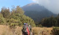 Gunung Semeru Erupsi, Semburkan Kolom Abu Setinggi 4.276 Meter