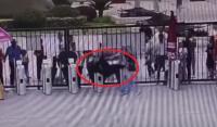 Seekor Simpanse di China Terekam Lolos dari Kandang dan Tendang Penjaga Bonbin