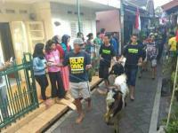 Mengenal Tradisi Mengarak Hewan Kurban di Malang